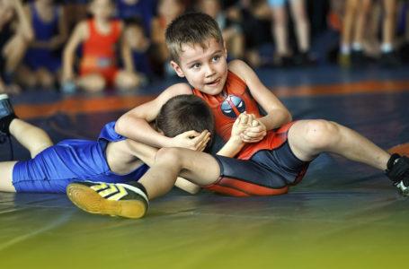 Двенадцать золотых медалей завоевали николаевские борцы