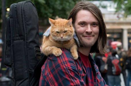 У Лондоні помер знаменитий вуличний кіт Боб