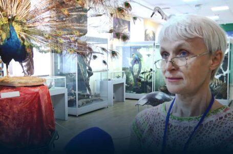 У Миколаївському обласному краєзнавчому музеї експонують міні-виставку