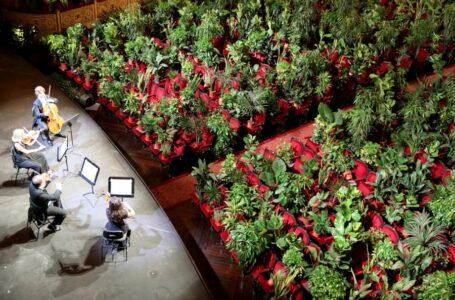 Концерт для рослин: барселонська опера відкрилася після карантину