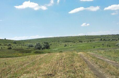 У Миколаївській області невідомі зорали землі ландшафтного заказника