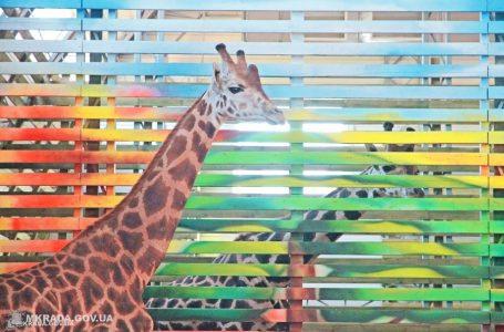 1 жовтня для людей похилого віку вхід у Миколаївський зоопарк безкоштовний