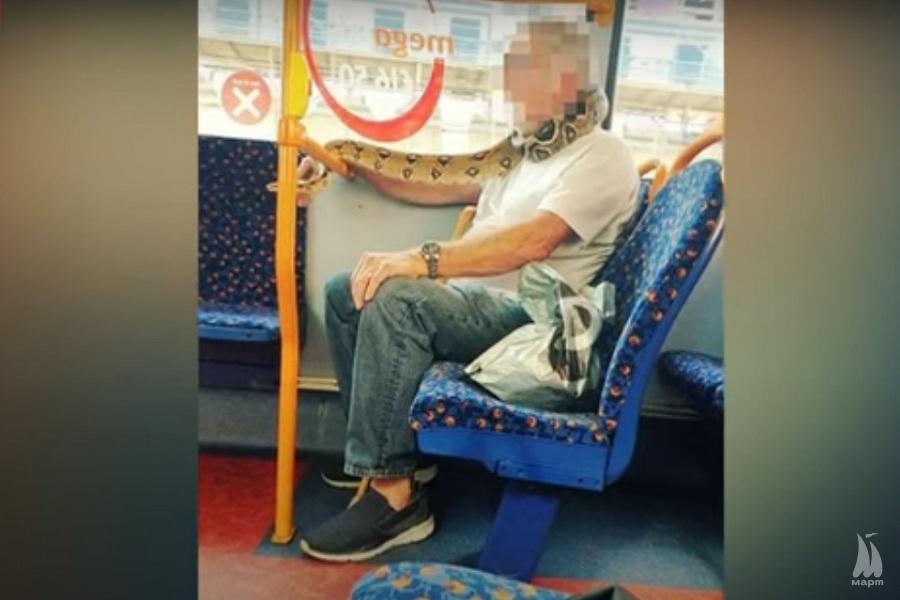У Манчестері пасажир автобуса використовував живу змію замість маски