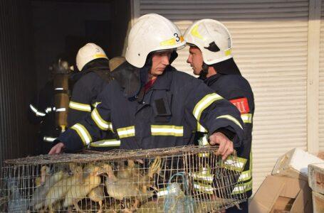 У Миколаєві рятувальники загасили дах приватного будинку