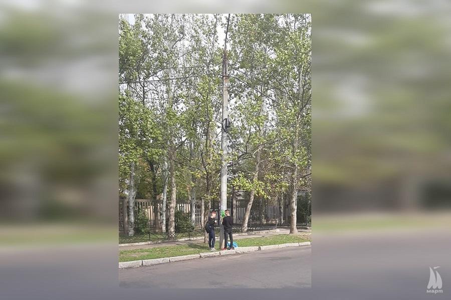 У Заводському районі розклеїли політичну рекламу на електроопорах