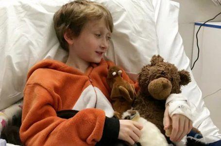 У Великобританії хлопчик заразився пневмонією від домашнього хомячка